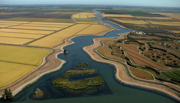 Aerial view of farmland and waterways in the Sacramento-San Joaquin Delta