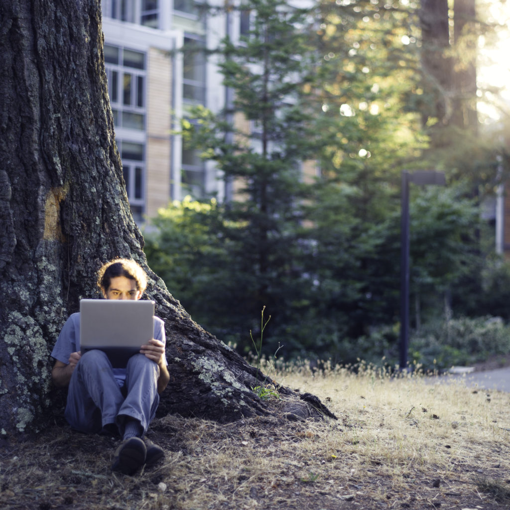 Computer user sitting outside by a tree using a laptop